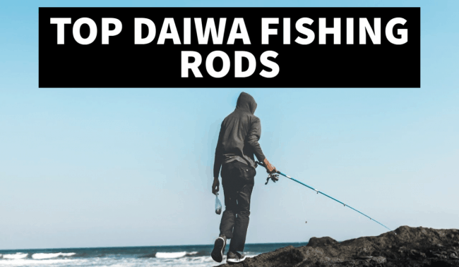 daiwa fishing rods review