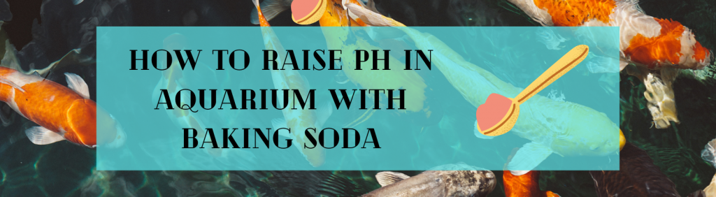 raise ph in aquarium with baking soda
